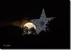 Roanoke Star 2013